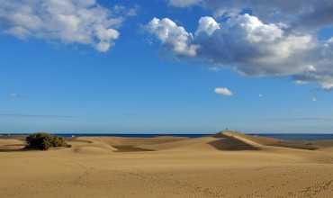 Zonas dunares - O GROVE